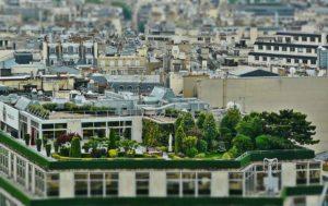 Dachgarten Dachbegrünung Dachterrasse Immobiliengutachter Melanie C. Weinz
