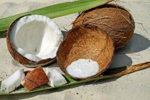 Kokosfasern Sachverständige Immobilien Gutachter Melanie C. Weinz